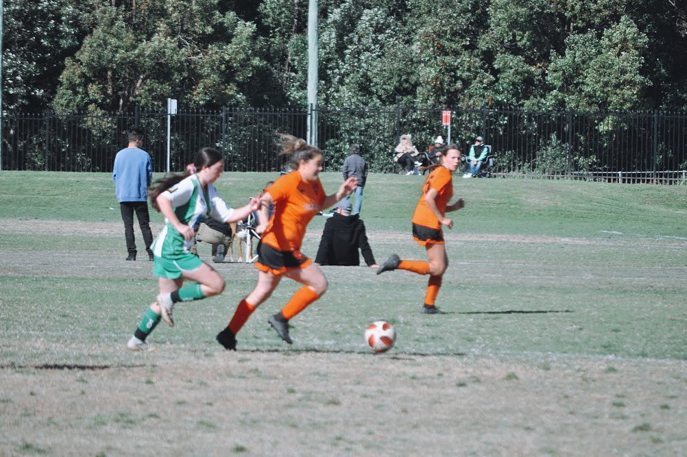 RD 8: Match Report vs East Gosford (Res)
